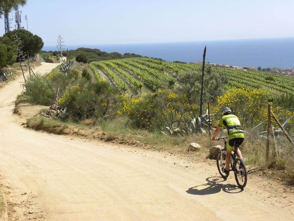 gavina mar actividades bicicleta btt cami