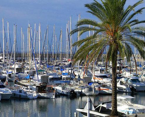 gavina mar el masnou puerto 2