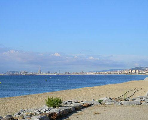 gavina mar el masnou playa 6